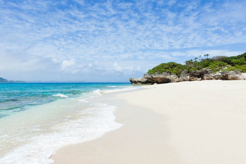 Tradewinds Travel Club Reviews Cancun